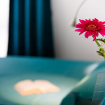 Dettaglio stanza fiori