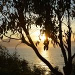 Tramonto sul golfo visto dal bosco Balestrate