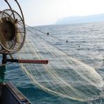 Pesca delle seppie, pesca artigianale, Blestrate