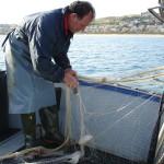 Pesca delle seppie con reti, Balestrate, pesca artigianale,